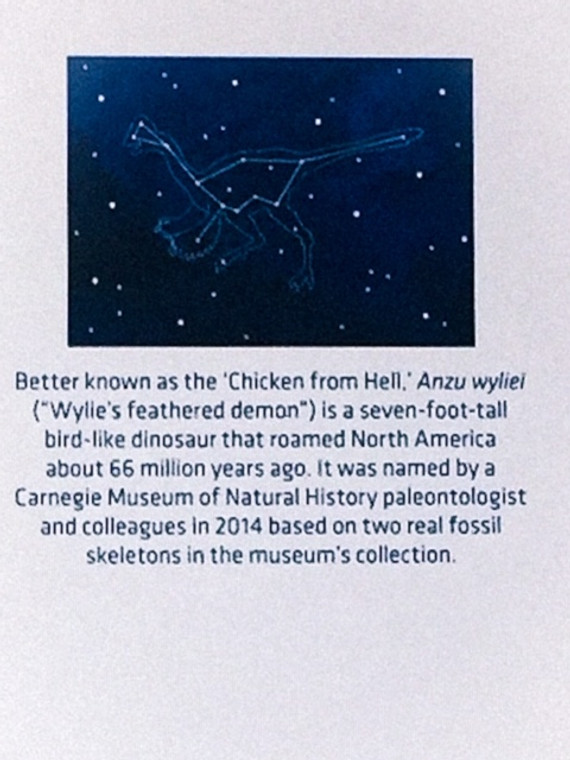 Stars on a blue sky that form an outline of a bird like dinosaur called Anzu named by CMNH Colleagues 2014.