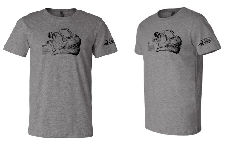 Grey shirt with Camarasaur skull and text in black ink, CMNH logo on left sleeve