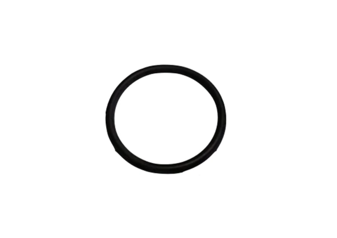 O-Ring, Body CPV G1