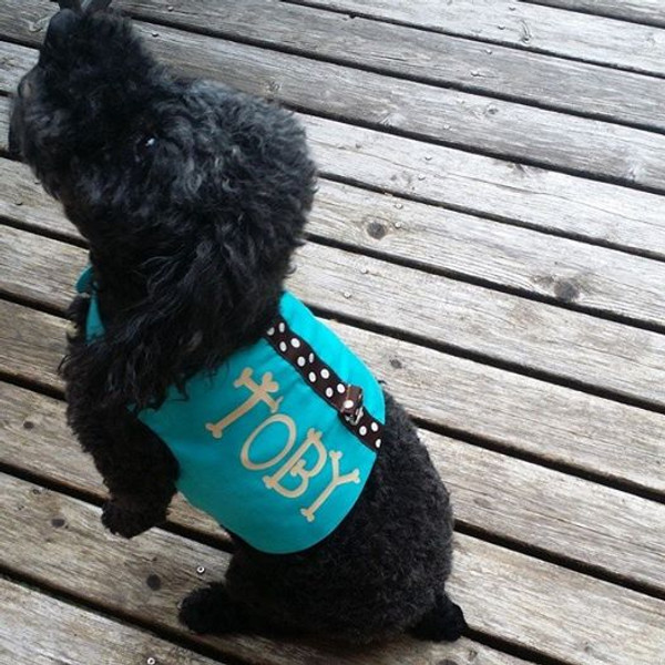 Toby wear Harness