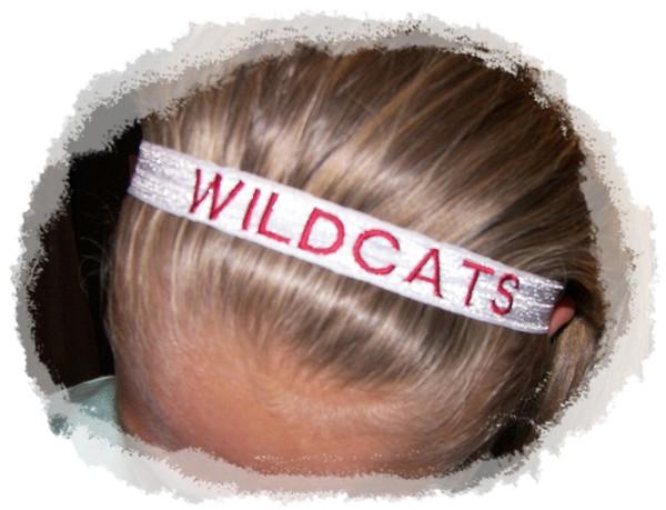 Team Headband  (50)