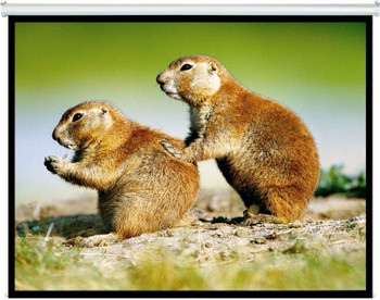 Image for Brateck Manual Projector Screen 2m x 1.5m (4:3 Ratio) AusPCMarket
