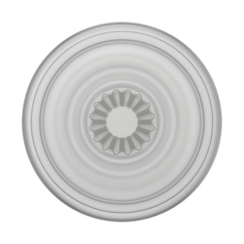 Popsockets PopGrip Plant - Universal Grip Holder - Clear / Grey Main Product Image