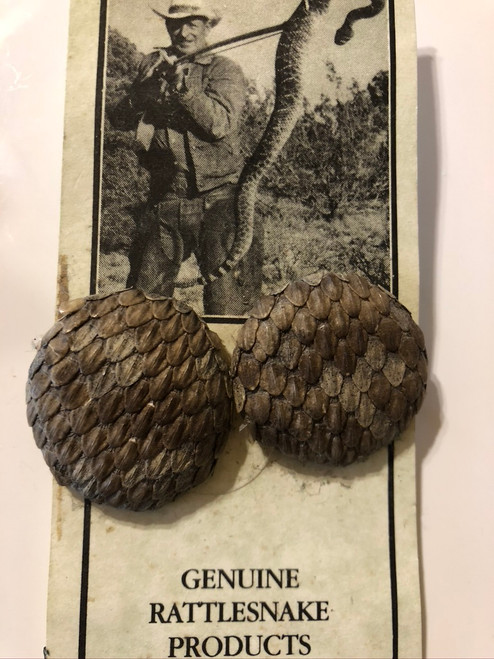 Rattle Snake Earrings
