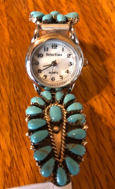 Navajo  Cluster Watch