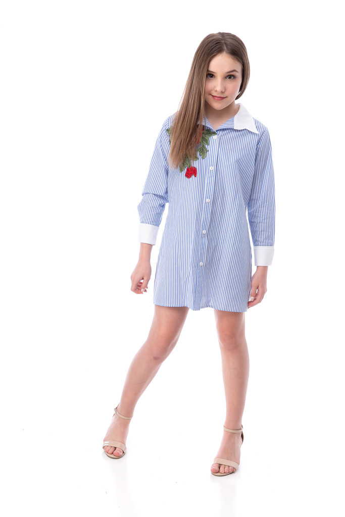 Tween Girls Blue and White Stripe Dress with Embroidery full length view.