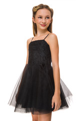 Short Black Floral Party Dress with Tulle