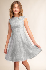 Silver Glitter Cap Sleeve Dress with Mesh Overlay