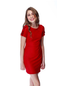 Red Fitted Dress with Mesh X Sleeve
