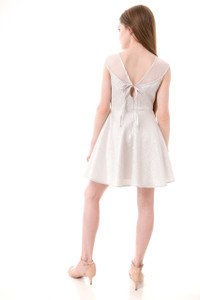 Tween Girls 7-16 Silver Fit and Flare Mesh Dress