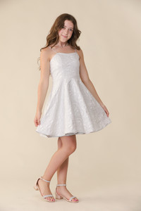 Silver Metallic Fit and Flare Dress in Longer Length