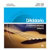 D'Addario Light Gauge Acoustic Bass Strings | Northeast Music Center Inc.