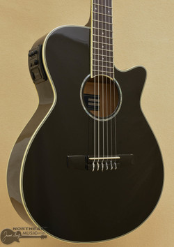 Ibanez AEG10NII Nylon Guitar With Electronics - Black | Nylon Classical Acoustic Electric Guitar - Northeast Music Center inc.
