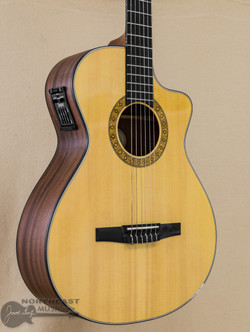 Taylor NS32ce Nylon Series Acoustic Guitar (Used) | Northeast Music Center Inc.
