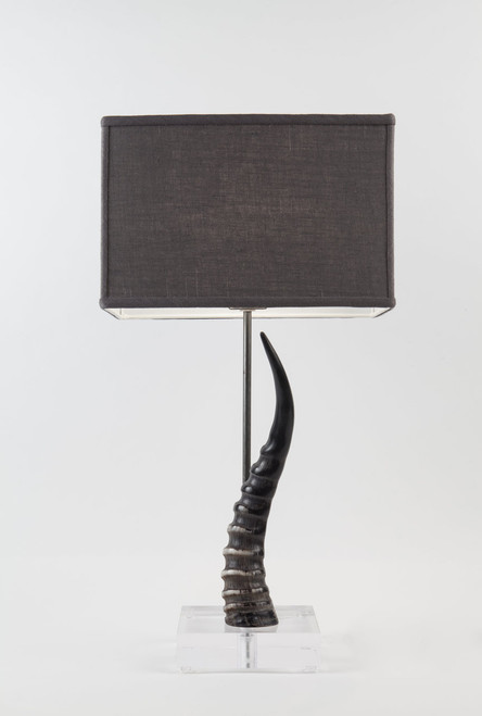 Blesbok Horn Table Lamp on Acrylic