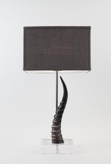 Blesbok Horn Table Lamp on Acrylic