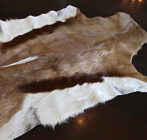 Springbok Hide Rug