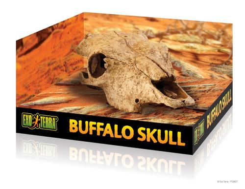 Exoterra Buffalo Skull