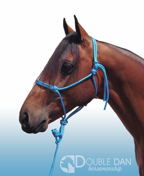 Blue 8mm cob halter (lead sold separately)