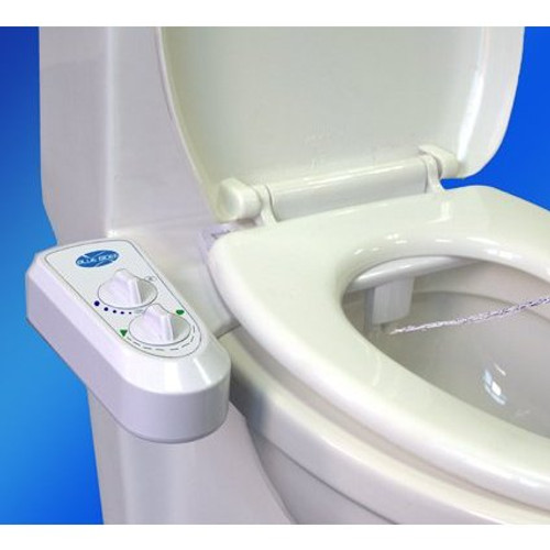 Cool Blue Bidet Bb 2000 Quality Clean Bidet For A Great Price Pdpeps Interior Chair Design Pdpepsorg