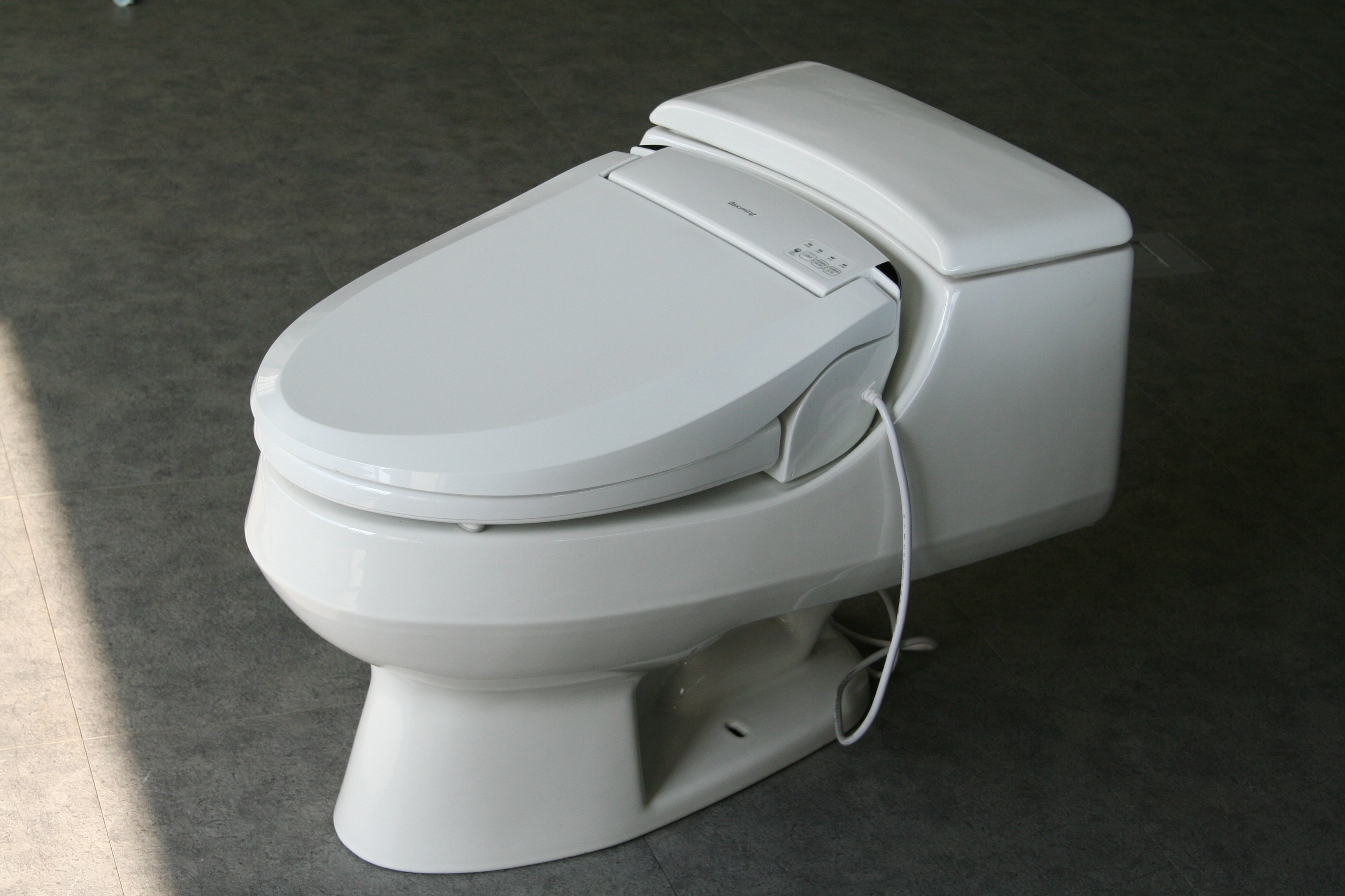 Best Bidet Seats For Kohler Rialto And San Raphael Toilets
