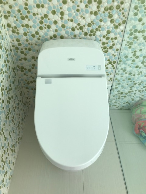 toto-g400-toilet-and-washlet-customer-photo-laura-b.jpg