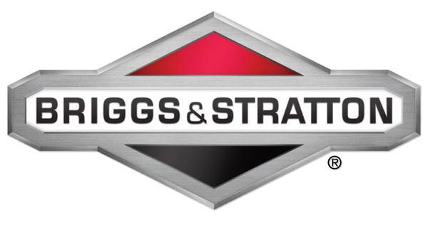 OEM Carburetor Briggs & Stratton 491031