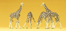 Preiser 79715 N Scale Giraffes