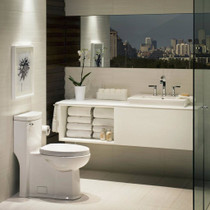 American Standard Boulevard FloWise Right Height Elongated One-Piece 1.28 gpf Toilet White