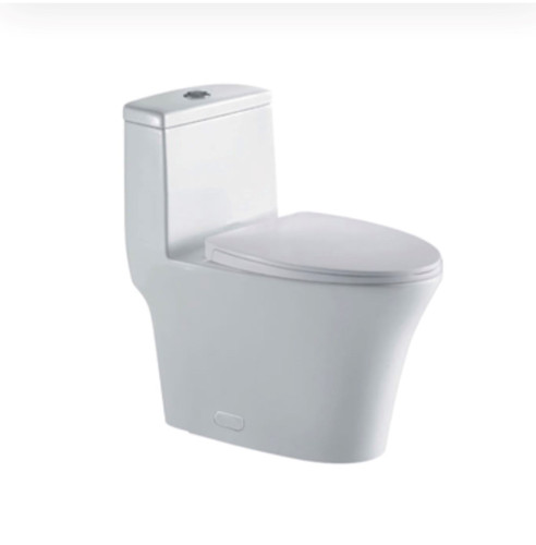 Crown Canon Single Flush One Piece Toilet