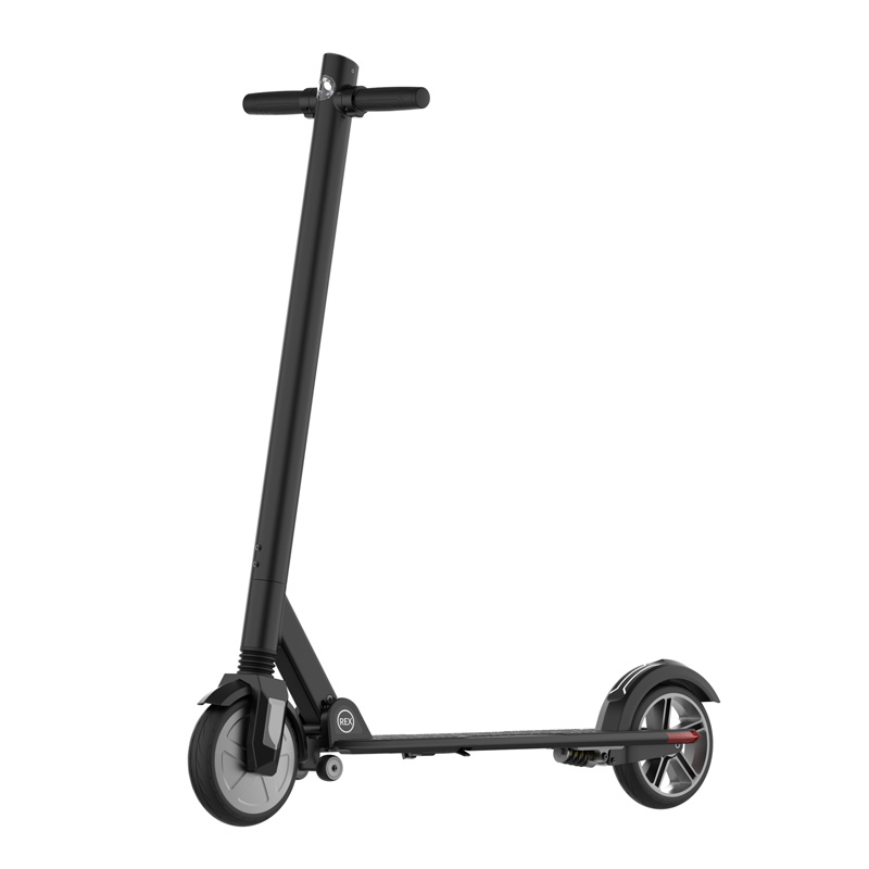 jasion-350w-electric-scooter-rex-w-8-inch-wheel-06.jpg