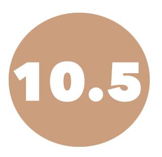size10.5.jpg