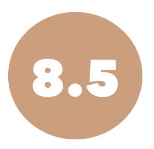 size8.5.jpg
