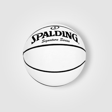 Signed White Panel Basketball