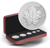 2013 FINE SILVER FRACTIONAL SET - 25TH ANNIVERSARY OF THE SILVER MAPLE LEAF - MINTAGE: 9999