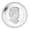 2014 $20 FINE SILVER COIN THE BISON: A PORTRAIT