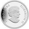 SALE - 2013 $20 FINE SILVER COIN - WINTER SNOWFLAKE - QUANTITY SOLD: 4166