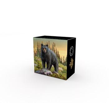 2017 $20 FINE SILVER COIN THE BOLD BLACK BEAR