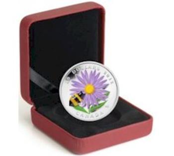 精制银币与玻璃蜜蜂