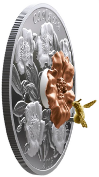 2019 $50 FINE SILVER COIN THE BUMBLE BEE AND THE BLOOM