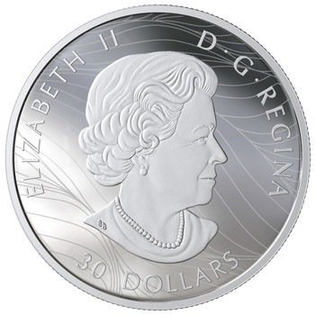 2019 $30 FINE SILVER COIN CANADIAN CANOPY: THE CANADA GOOSE