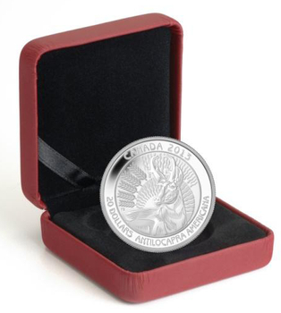 SALE - 2013 $20 FINE SILVER COIN PRONGHORN - UNTAMED WILDERNESS - QUANTITY SOLD: 4181