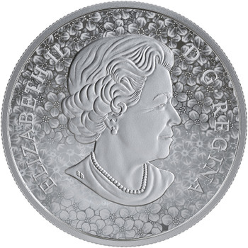 2019 $20 FINE SILVER COIN FORGET-ME-NOT