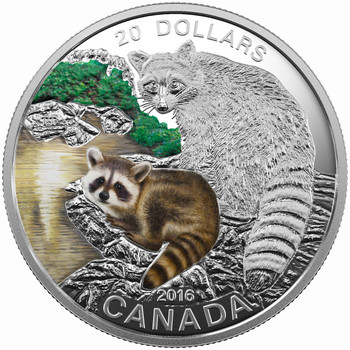 SALE - 2016 $20 FINE SILVER COIN - BABY ANIMALS: RACCOON