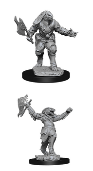 D&D UNPAINTED MINIS FEMALE DRAGONBORN FIGHTER