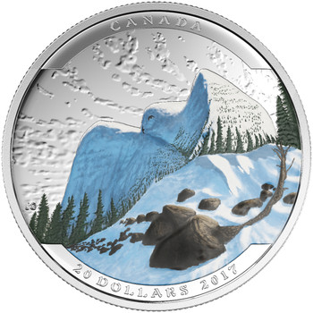 SALE - 2017 $20 FINE SILVER COIN – LANDSCAPE ILLUSION SNOWY OWL