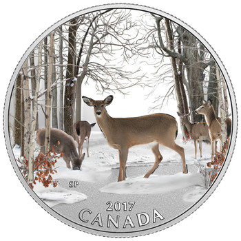 SALE - 2017 $10 FINE SILVER COIN SPRING SIGHTINGS