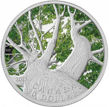 SALE - 2013 $20 FINE SILVER COIN CANADIAN MAPLE CANOPY (SPRING)