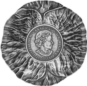 2020 $20 FINE SILVER COIN REMEMBRANCE DAY