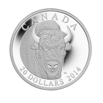SALE - 2014 $20 SILVER COIN THE BISON: A PORTRAIT